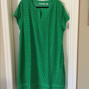 Green lace short sleeve dress, NEW
